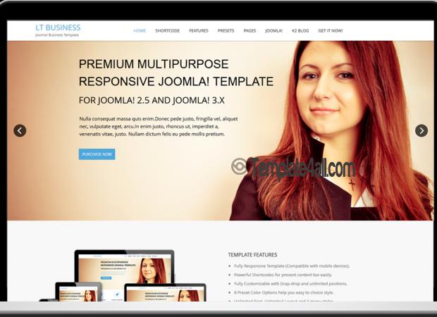 LT Responsive Business WordPress Theme