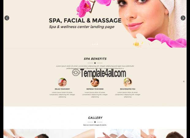 Free Sauna Beauty Wordpress Theme