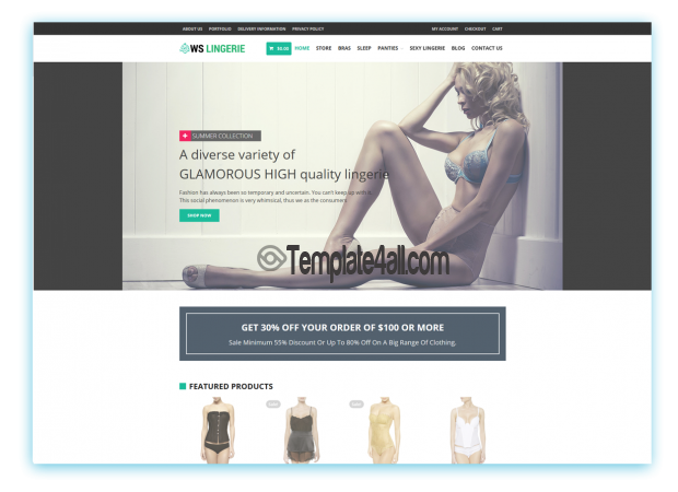 WordPress Responsive Lingerie Woocommerce Theme