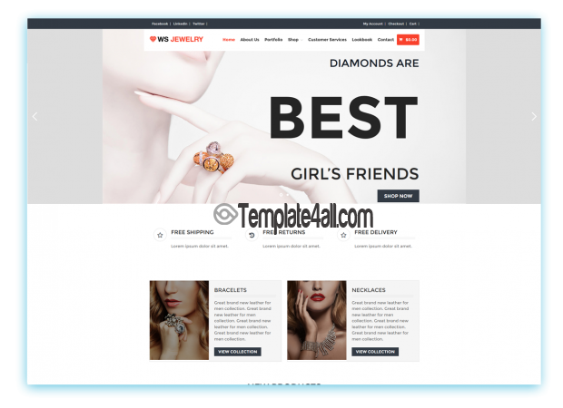 Diamond Free Responsive Jewelry Wordpress Theme