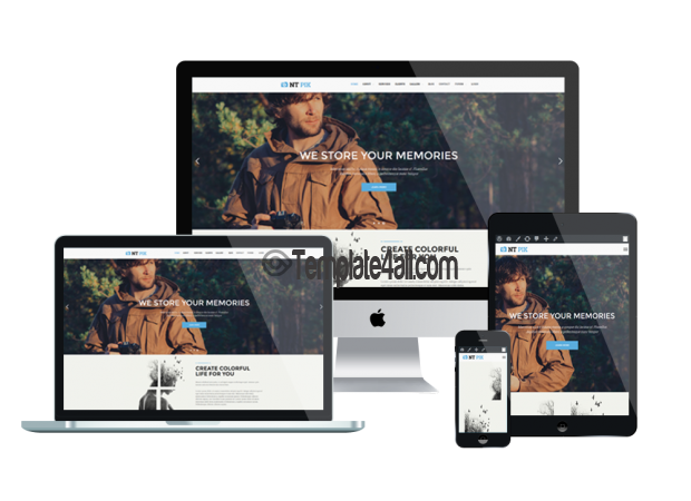 Responsive NT Pik Free Gallery Phography WordPress Theme