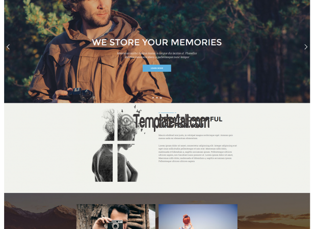 NT Pik Free Gallery Phography WordPress Theme