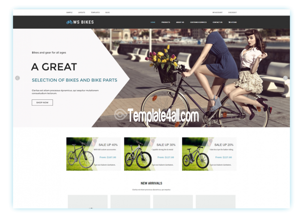 WS Free Responsive Bikes Shop WordPress Theme